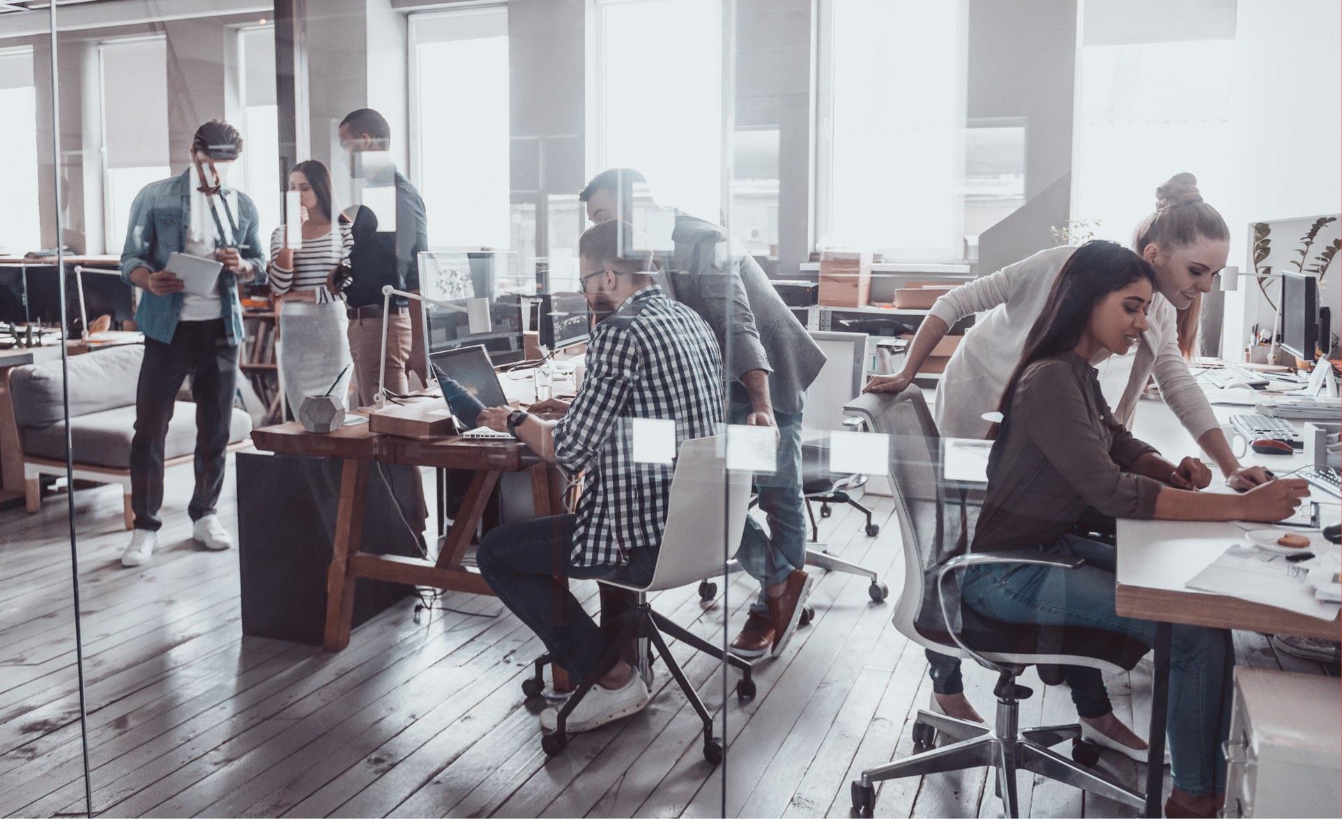 Agencja Interaktywna - tworzenie stron internetowych to ich specjalizacja.